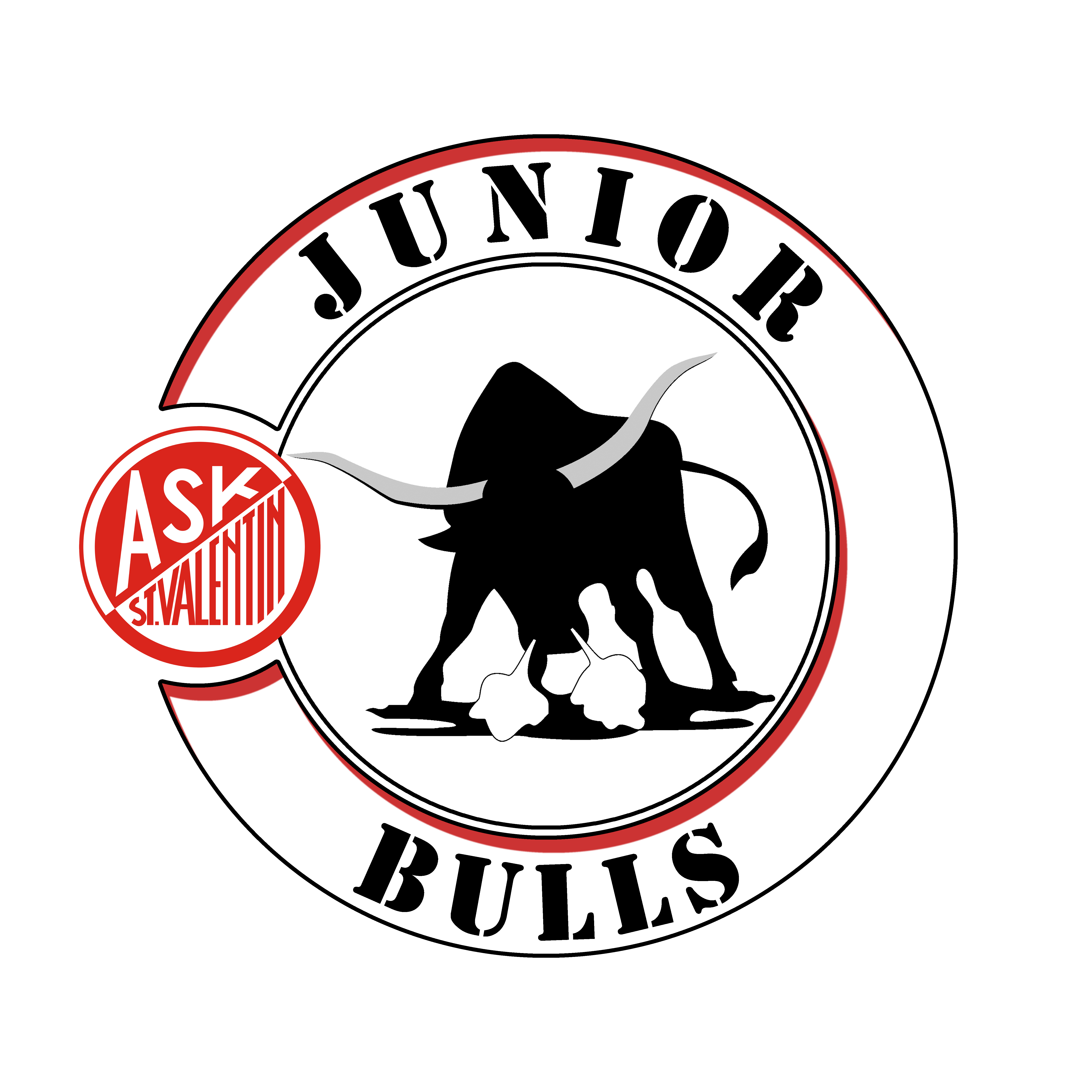 JUNIOR BULLS LOGO